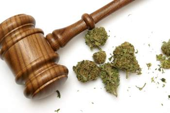 Marijuana and court gavel